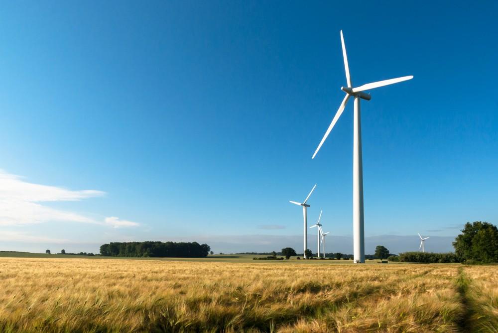 Wind-turbines spin in an open field